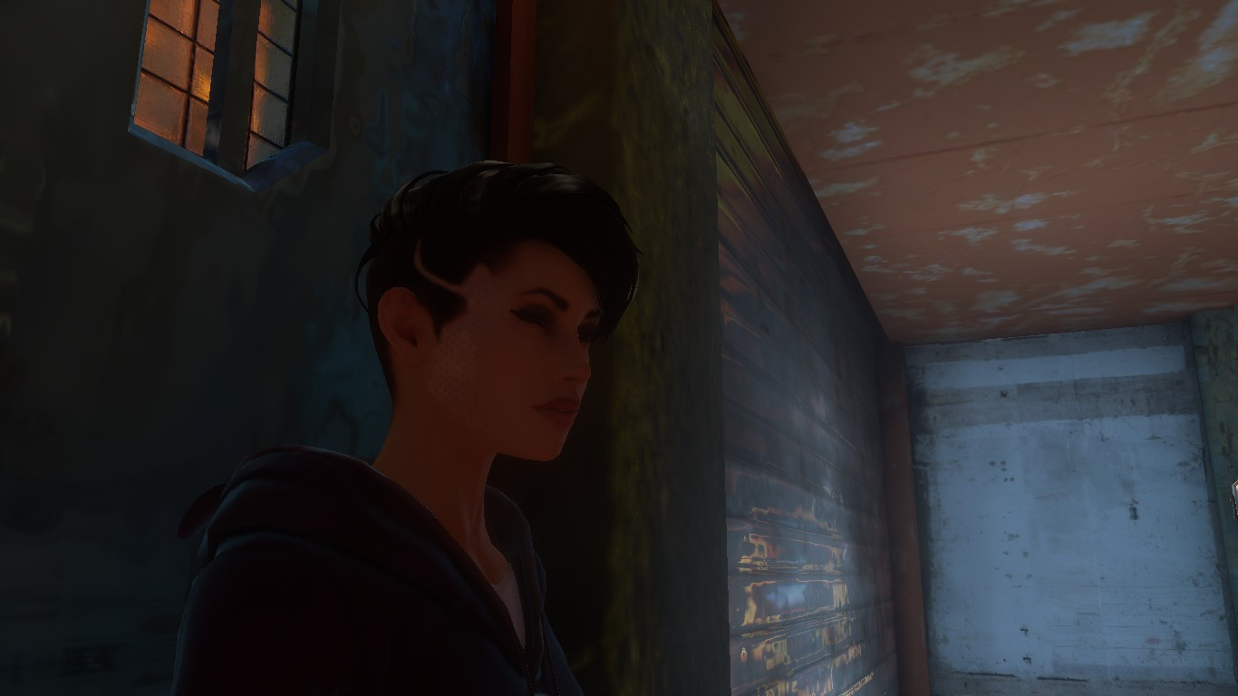 Zoé dreamfall chapters Book 3